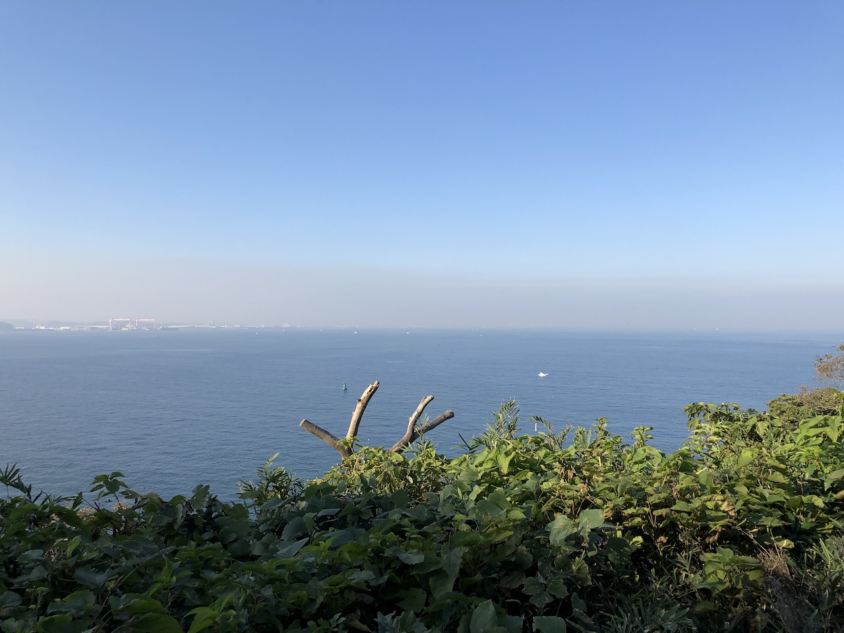 【都心から1時間半でラピュタの世界!】「猿島」へ日帰り旅行!